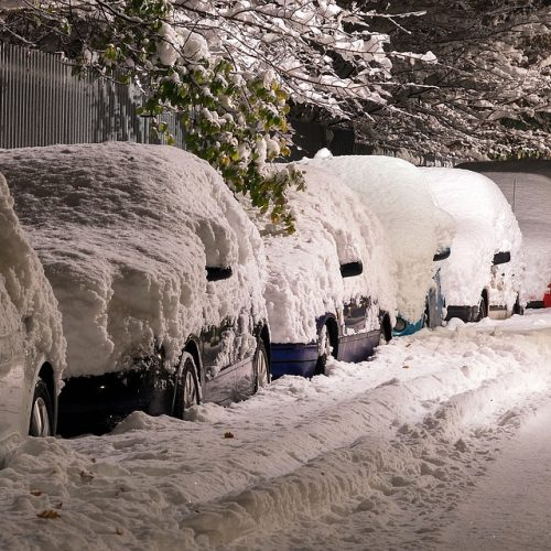 Row of cars under a layer of snow.