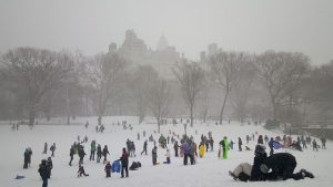 kids playing with snow in park