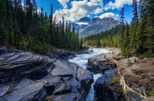 If you move from the USA to Canada you will be spending more time in nature.