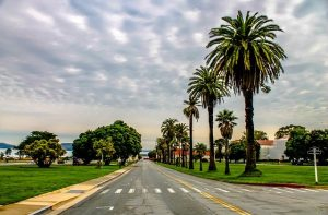 LA road leading to a beach.